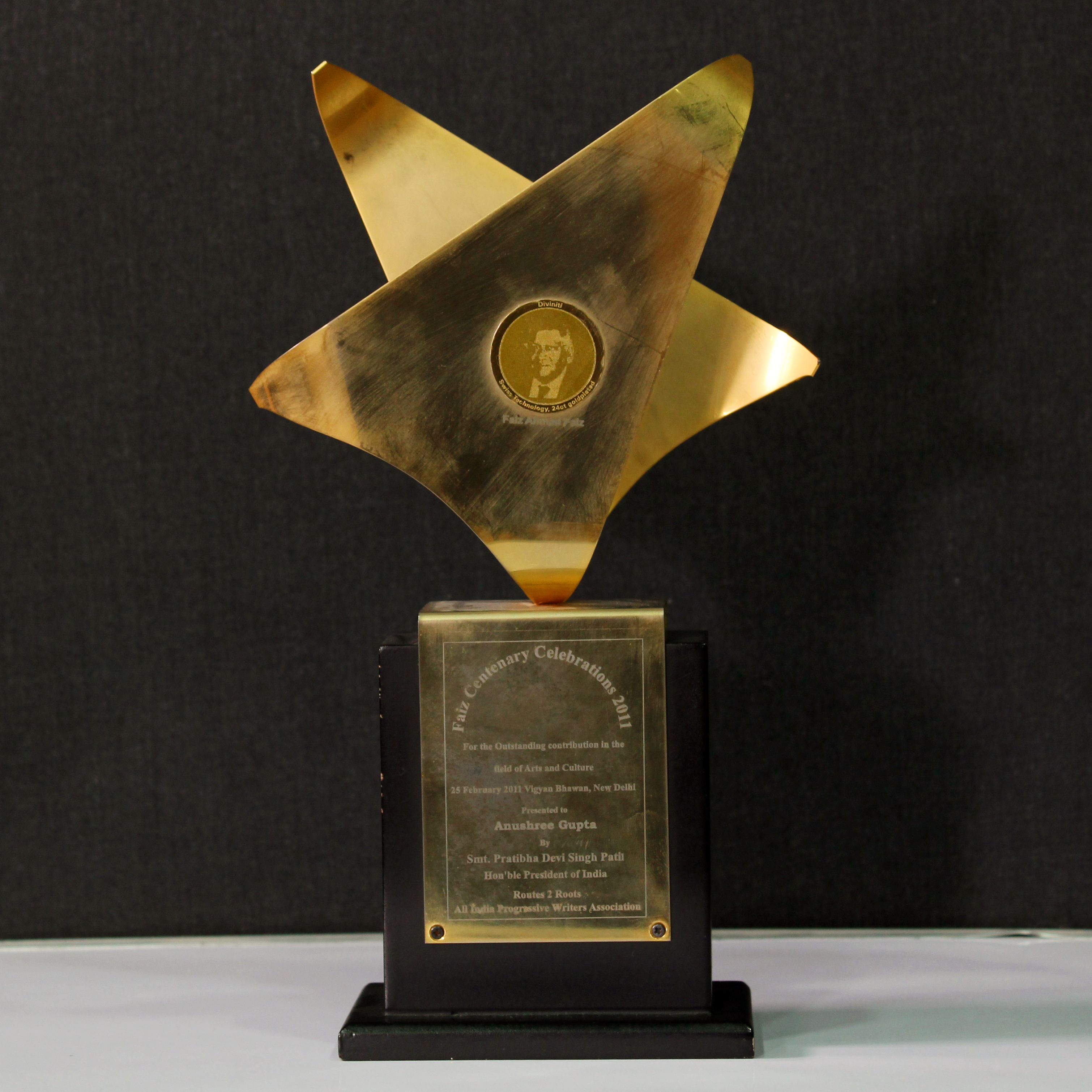 Outstanding Contribution Award in the Field of Art & Culture